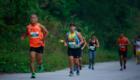 Laguna-Lang-Co-Marathon-2015-post-27.10-10