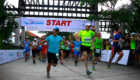 Laguna-Lang-Co-Marathon-2015-post-27.10-9