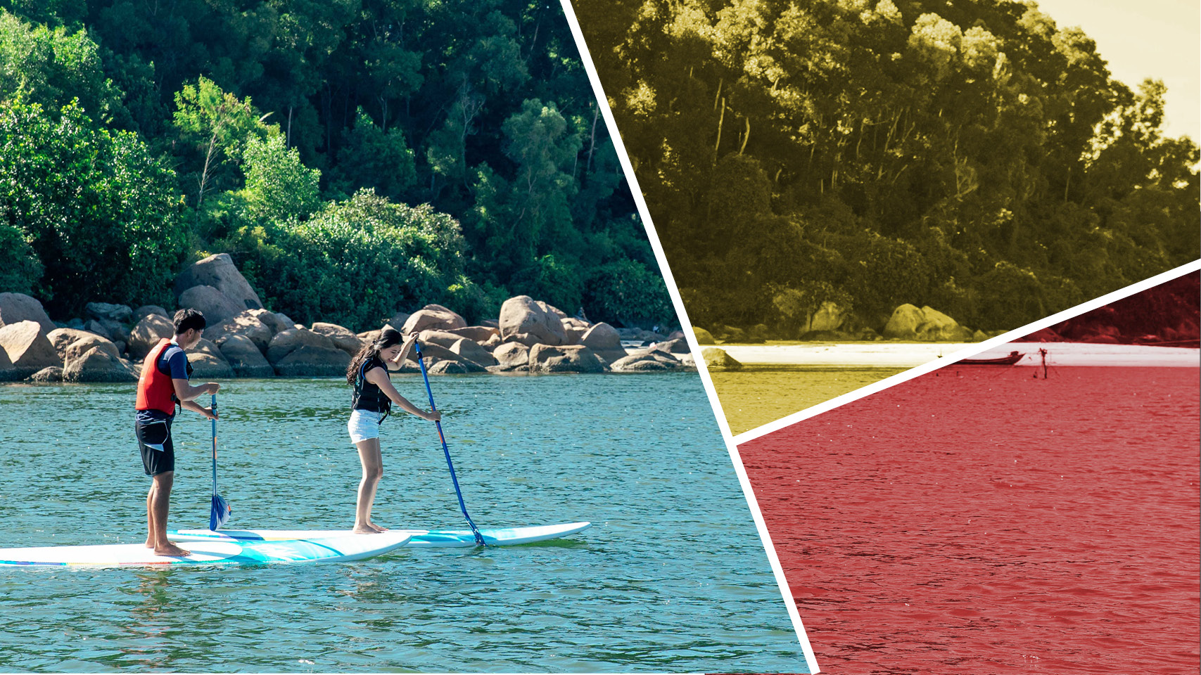 Stand-Up Paddle Board-banner