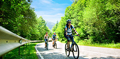 laguna-lang-co-tour-bike