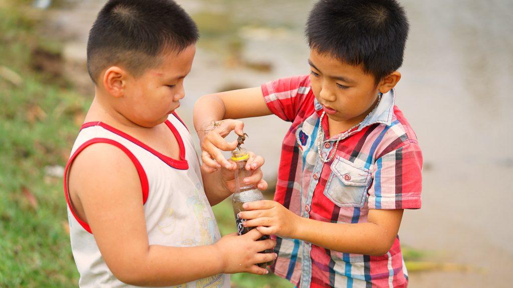 Trẻ em chơi đùa trên con đường đầm Lập An