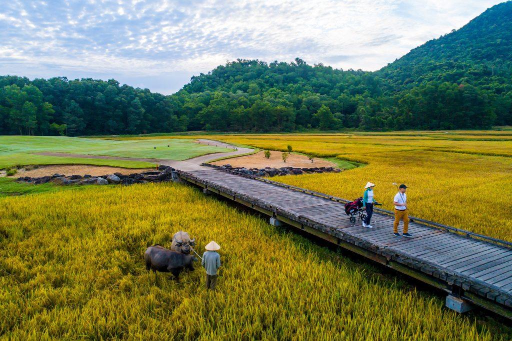 Top 10 Best Golf Courses in Vietnam