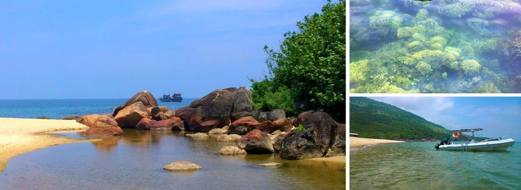 Coastal Discovery Tour